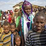 Сомали — интересные факты о стране
