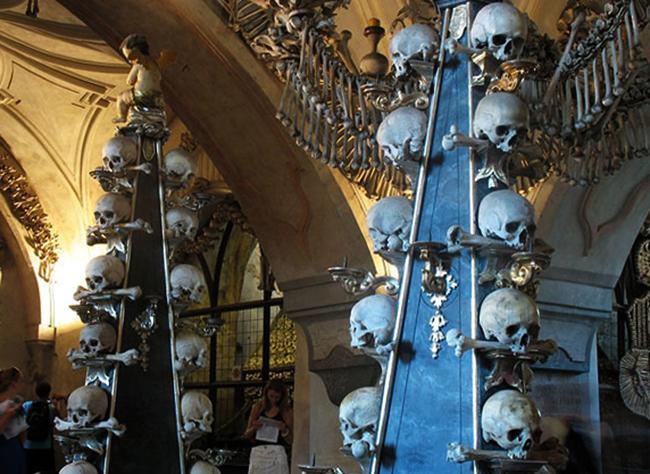 Музей костей